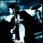 cellist iveagh gardens dublin johnjordanphotography